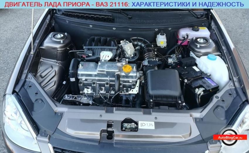 Двигатель ВАЗ 21116 1.6 8v (Лада Приора): ресурс, отзывы, характеристики, расход, болячки и ремонт