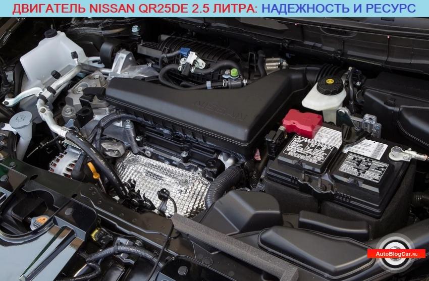 Двигатель Ниссан QR25DE 2.5 16v (Nissan X-Trail, Renault Koleos): надежность, ресурс, характеристики, отзывы, сервис и проблемы